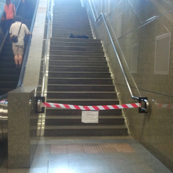 Sleepy dog on closed MRT stairs