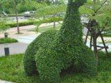 Monday Madness – Dinosaur Frenzy in KhonKaen