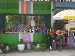 Coffee & Milk Singburi