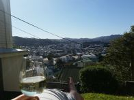 sunshine and wine